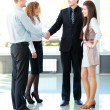 Business shaking hands — Stock Photo #12172470