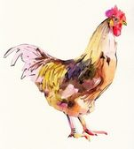 Watercolor painting sketch cock — Stockfoto