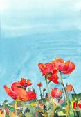 Original watercolor poppy flower background — Stock Photo