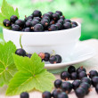 Foto Stock: Fresh blackcurrant in bowl
