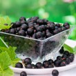 Stock Photo: Fresh blackcurrant in bowl