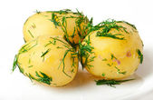 Young boiled potatoes with dill in oil — Stock Photo