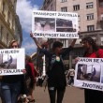 Animal welfare demonstration — Stock Photo #10777852