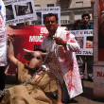 Animal welfare demonstration — Stock Photo #10777884
