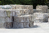 Paper bales — Stock Photo