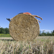 Royalty-Free Stock Photo: Supine man on Hay bale