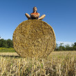 Man sitting on a Hay bale — Stock Photo #11849534