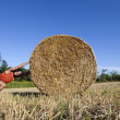 Man pushing hay bale — Stock Photo
