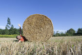 Hay bale funny tragedy — Stockfoto