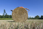Supine man on Hay bale — Stock Photo