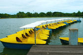 Yellow and blue water-cycle boat in park — Photo