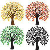 Four oak with yellow, red, green foliage. Ebony. — Stock Vector