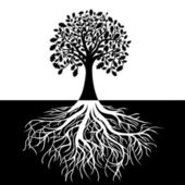 Tree with Roots on Black and white Background — Stock Vector