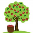 Cherry tree on white background — Stock Vector