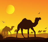 Desert caravan — Stock Vector