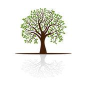 дерево отбрасывает тень, место для текста — Cтоковый вектор