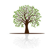 Strom vrhá stín, místo pro text — Stock vektor