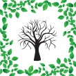 Tree isolated - Stock Vector