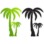 Set of palm tree silhouettes vector — Stock Vector