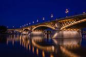The Margaret Bridge — Stock Photo