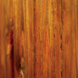Royalty-Free Stock Photo: Old, grunge wood panels used as background