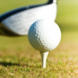Golf close up on a driving range — Stock Photo