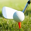 Playing golf. Golf club and ball. Preparing to shot — Stok fotoğraf