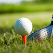 Playing golf. Golf club and ball. Preparing to shot — Stock Photo #10870127