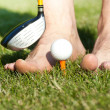 Funny golf game — Stock Photo #10870635