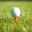 Close up of golf ball on a tee — Stok fotoğraf