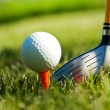 Shiny driver and golf ball on grass — Stock Photo
