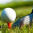 Shiny driver and golf ball on grass — Stockfoto