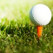 Golf ball on tee in draving range — Foto de Stock