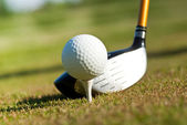 Golf club and ball in grass — Stock Photo