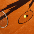 Tennis ball and racket - Stock Photo