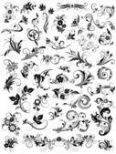 Kalligraphische floral design-elemente — Stockvektor
