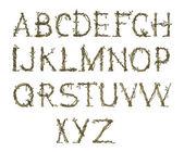 Alfabeto ramoscello, elegante — Foto Stock