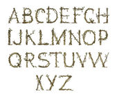 Twig alfabet, elegante — Stockfoto