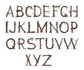Garden alphabet — Stock Photo