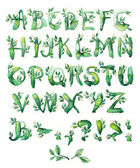 Bay leaf, set of letters — Stock Photo
