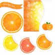 Big Orange Set — Stock Vector #10737265
