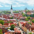 Panoramic view on the Old City of Tallin — Stock Photo #11352906