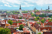 Panoramic view on the Old City of Tallin — Stock Photo