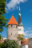 View on the Old Town of Tallin — Stock Photo
