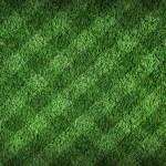 fotbalové hřiště — Stock fotografie
