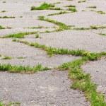 Old asphalt — Stock Photo #11376890