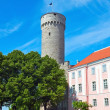 Toompea castle - Stock Photo