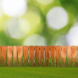 Green grass in garden with fence near the brick wall — Stock Photo #12320315