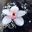 Flower in the hair of the bride — Stock Photo