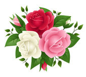 Vector illustration of red, pink and white roses — Stock Vector